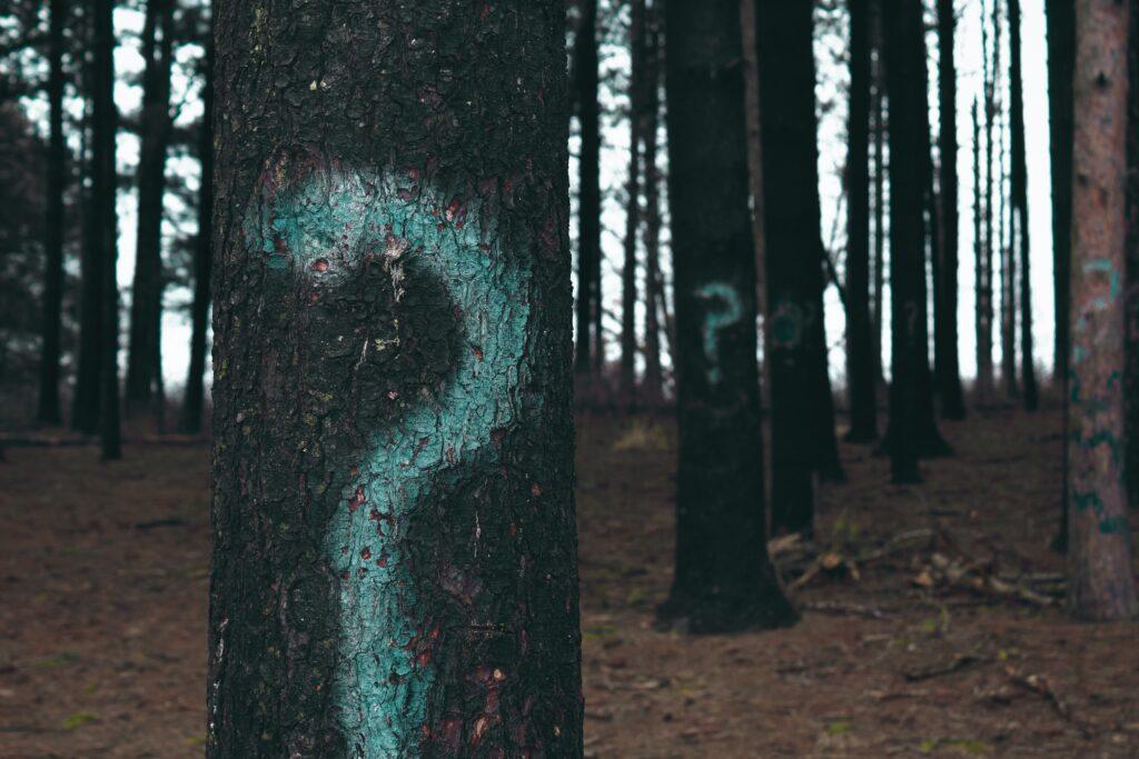はてなの木